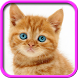 Talking, Dancing Cat. by iim mobile