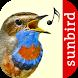 Vogelstimmen Id - Ruf + Gesang by Sunbird Images