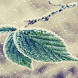 Snowy Leafs Live Wallpaper