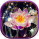 3D Lotus Live Wallpaper by Mom And Dad