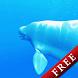 Shoal of Beluga Trial by DMF, Inc.