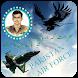 Pakistan Air Force DP Frame Editor HD : PAF Frames