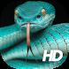 Snake Wallpaper HD by Premium Developer