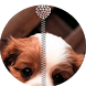 Puppy Dog Zipper LockScreen by Alpha Achil