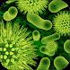 علاج الالتهابات البكتيرية