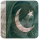 Pakistan Flag Profile Picture by GePro