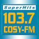103.7 COSY-FM by WSJM Inc.
