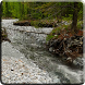 River Video Live Wallpaper by Jacal Video Live Wallpapers