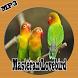 Kumpulan Masteran Lovebird Mp3 2017 by RinjaniApp
