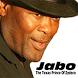 Jabo Zydeco Blues by PDQ Digital Media