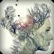 Dual Exposure - Blend 2 Photo by JSK Studio App