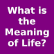 What is the Meaning of Life? by Limpossible Technologies