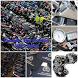 Panduan Membeli Motor Bekas by KVM apps