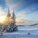 Winter Live Wallpapers by Fantastic Live Wallpapers