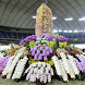 International Orchid Festival by takemovies