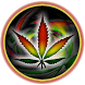 Weed Marijuana Live Wallpaper by DualApps