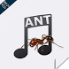 ANT Music Learner 2016 by ANT Mag