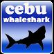 cebu whale shark by Cebucall