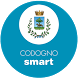 Codogno Smart by Internavigare