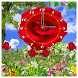 Flower Clock Wallpapers HD by JohnAppsLtd Free Live Wallpapers & HD Backgrounds