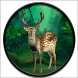 Wild Animals: Jungle Hunter 3D