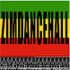 Zimdancehall.com by zim-dancehall.video