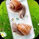 Snail in Phone best joke by Just4Fun