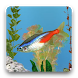 aniPet Freshwater Live WP by aniFree