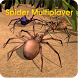 Spider World Multiplayer by Wild Foot Games