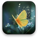 Butterfly Live Wallpaper by Selfie