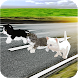 Kitten Cat Craft Racing:Cute Cat World Tournament by Specular Games