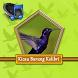 Master Burung Kolibri Ninja by Adeliascu