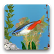 aniPet Freshwater Aquarium LWP by aniFree