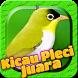 Master Audio Chirping Bird by Kicau Burung Juara No.1