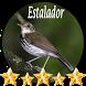 Canto de Estalador by jonn jeff