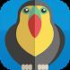 Livre de coloriage des oiseaux by Mobile free apps