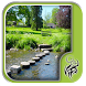 Garden Stepping Stones Design by Spirit Siphon