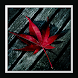 Leaf Live Wallpaper by art wallpaper