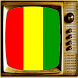 TV Guinea Info Channel by Lists of television channels