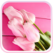 Pink Tulips Live Wallpaper! by Live Wallpaper HD Studio