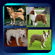 Dog Breed Picture Quiz by Bank Prove Productions