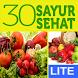 30 Resep Sayur Sehat Lite by Mahoni Global, PT