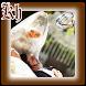 Adab Suami Istri Lengkap by Khum Khum