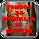 Fondos de Pantalla de Gatitos by MasPRO