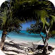 Sunny Beach Video Wallpaper by ComfyDj