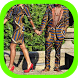 African Couple Dresses Fashion by Amilova Apps