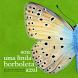 Borboleta Azul by Nelson Fernandes