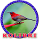 Masteran Kolibri Durasi Panjang by Goodapps Project