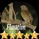Canto de Flautim