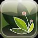 Plantes Remeieres by GalloEduardo